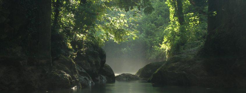 River walking i giganti verdi della cascata